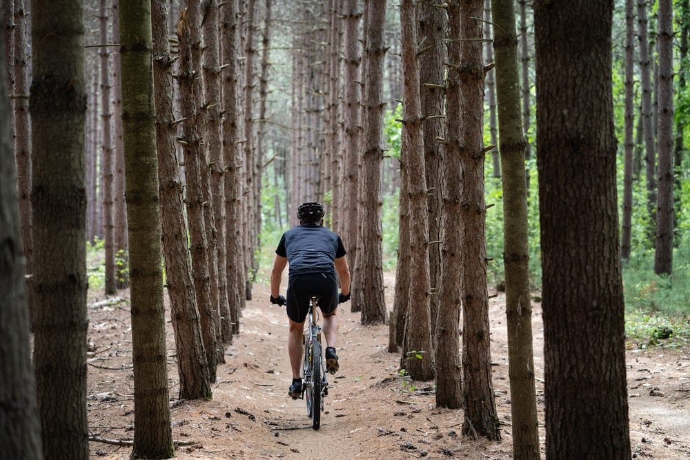 person riding bicycle in forest trees